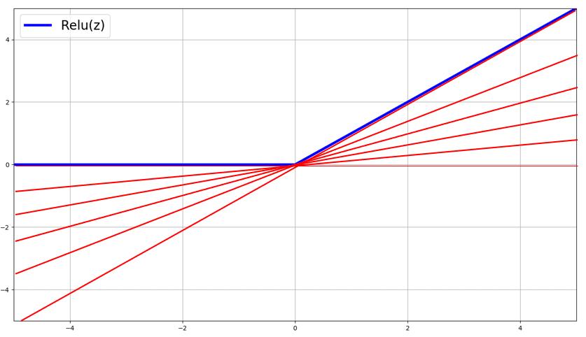 sub-gradients of relu